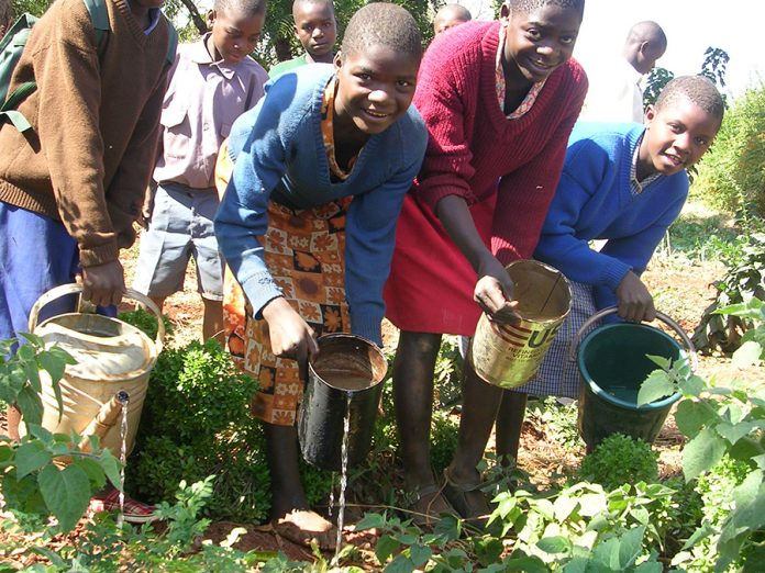 environment and conservation education a must in schools